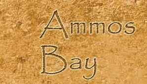 Locations de vacances -  - Ammos Bay