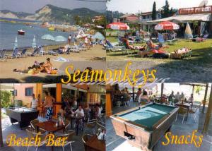 SEAMONKEYS Beach Bar